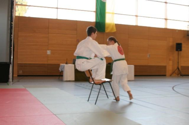 Vorführung Sportpalette 2012 Stuhl